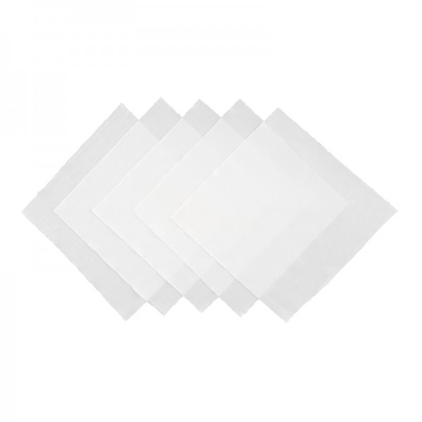 Antistatic Clean Room Wipes 5 Pieces